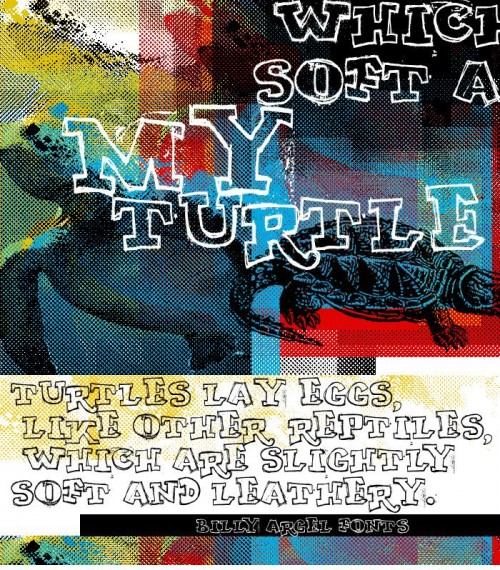 10_MY TURTLE Font