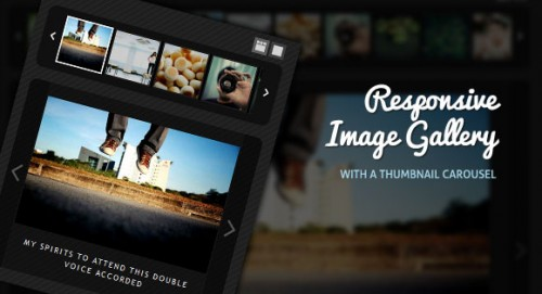 1_Responsive Image Gallery with Thumbnail Carousel