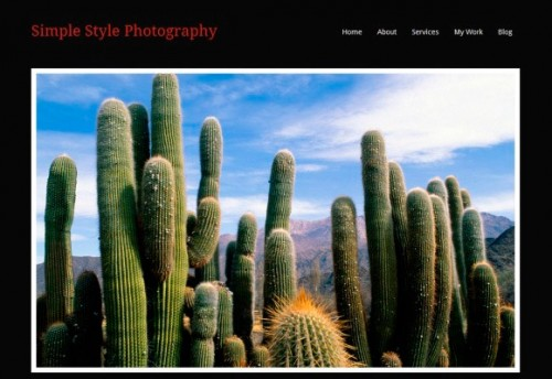 32_Simple Style Photography Theme