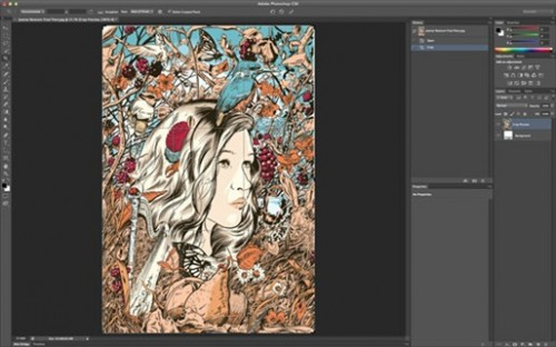 8_Photoshop CS6′S New Crop Tool Step-by-Step
