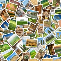 Places to Get Free Images for your Blog