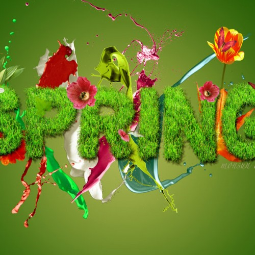 Spring Wallpaper By Monsun
