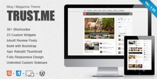 TrustMe - Responsive WordPress Magazine / Blog