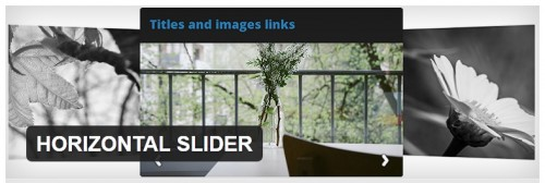 HORIZONTAL SLIDER