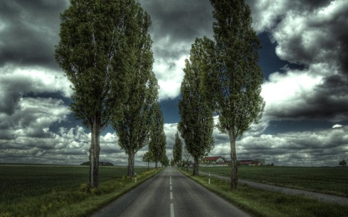 Along the Road