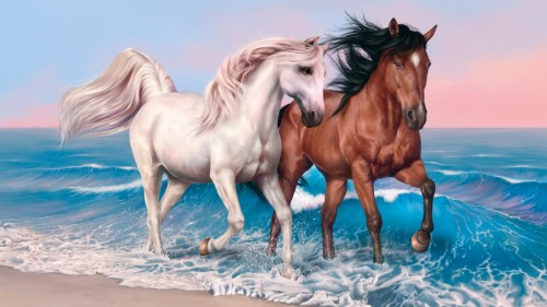 Horse Running in The Sea